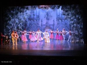 Barcellona Pozzo di Gotto: Il lago dei cigni incanta il pubblico del Teatro Mandanici